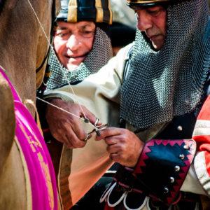 La bollatura dei cavalli (Arezzo 2009)