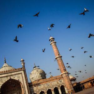 Jama Masjid, la moschea aperta più grande di Delhi e di tutta l'India (India 2012)