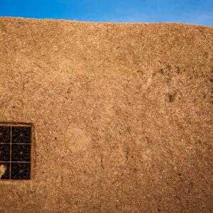 Un gatto si riposa alla finestra di una tipica casa fatta di fango e paglia nella Valle delle Rose (Marocco, 2010)