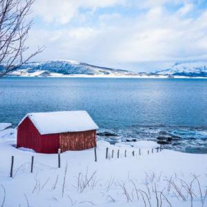 (Norvegia 2017)